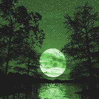 GreenNight
