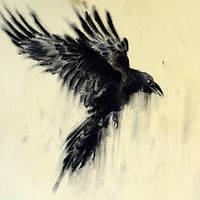 Immortal_Dark_Crow